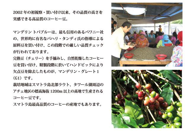 マンデリン・トバブルー コーヒーの説明02